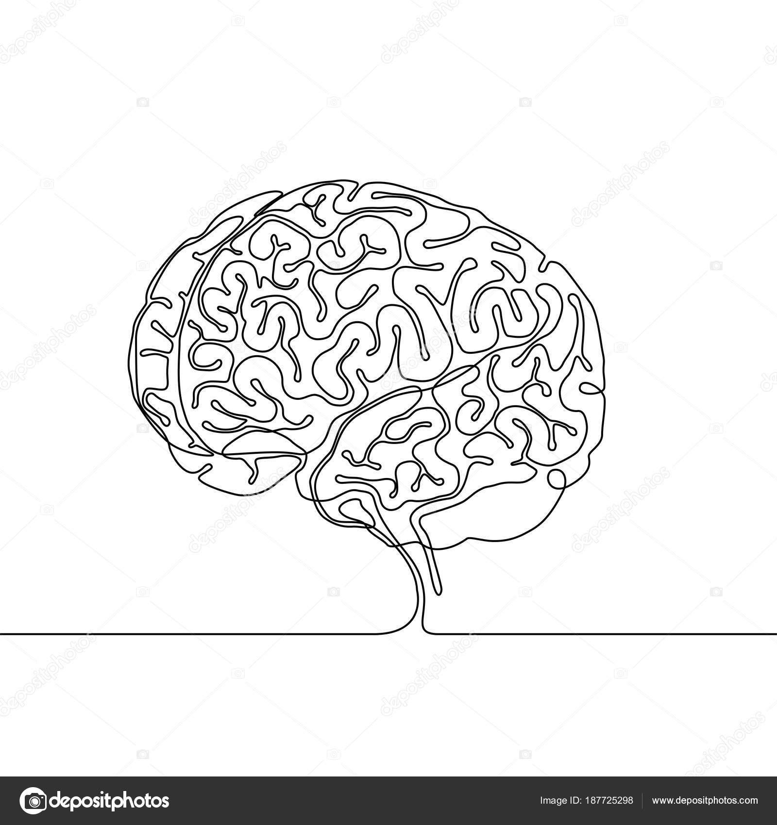 Dessin au trait continu d'un cerveau humain avec