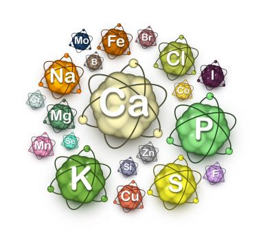 Various microelements, macroelements and minerals
