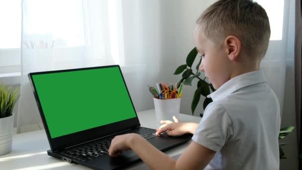 Roztomilý malý školáček v lékařské masce učení na počítači, koncept distančního vzdělávání. Pohled zezadu, zelená obrazovka