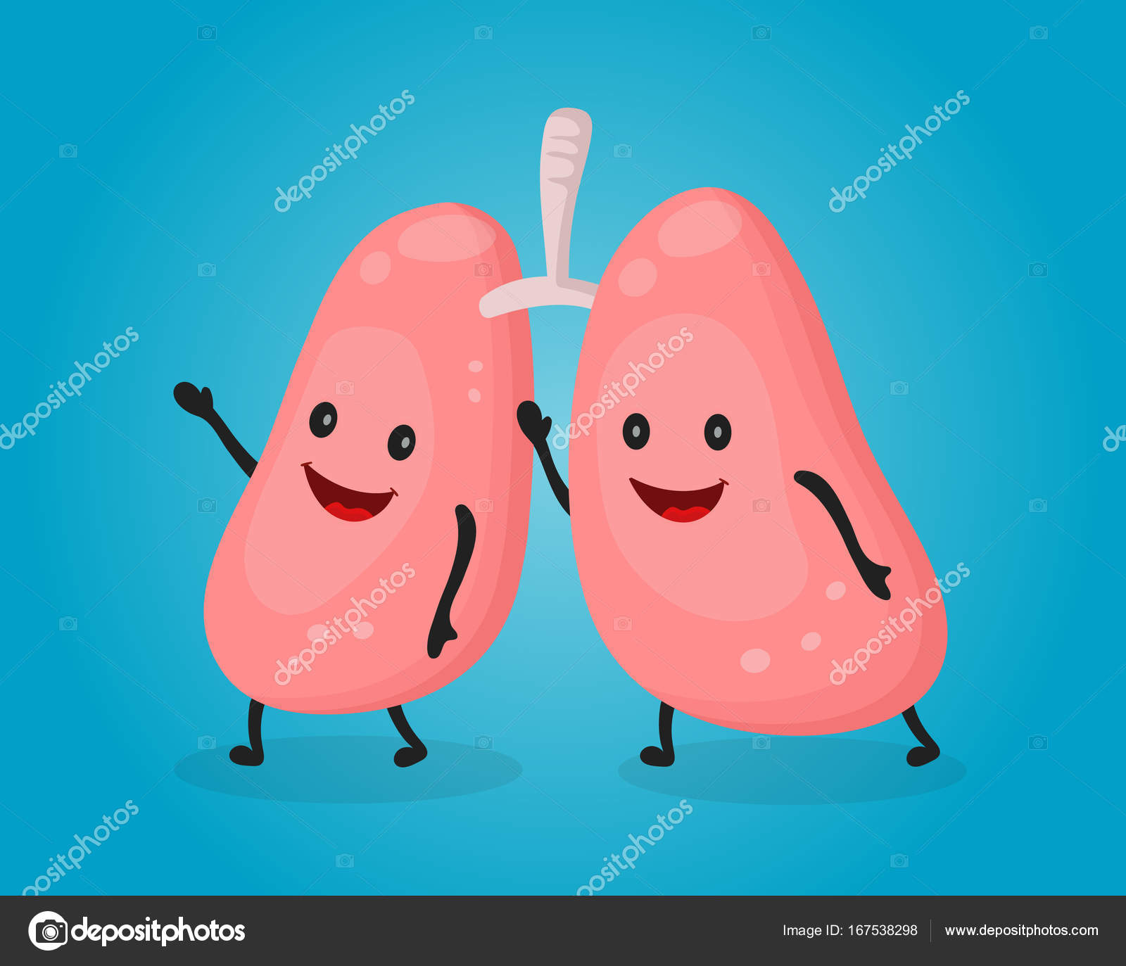 Feliz pulmones lindos de la diversión. Dibujos animados plano Vector ...