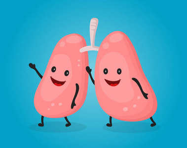 Happy fun cute lungs. Vector flat cartoon