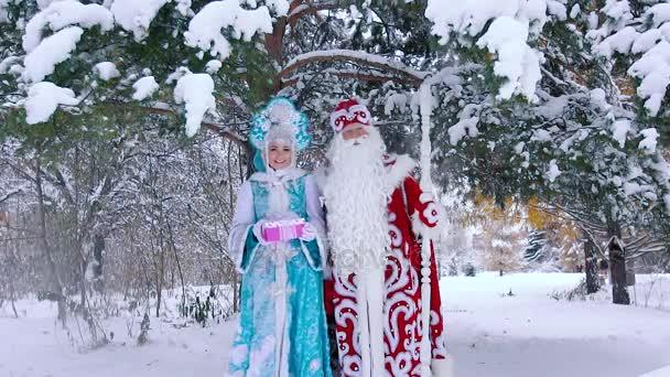 Apja fagy és hó leánykori állandó hóval borított fa alatt