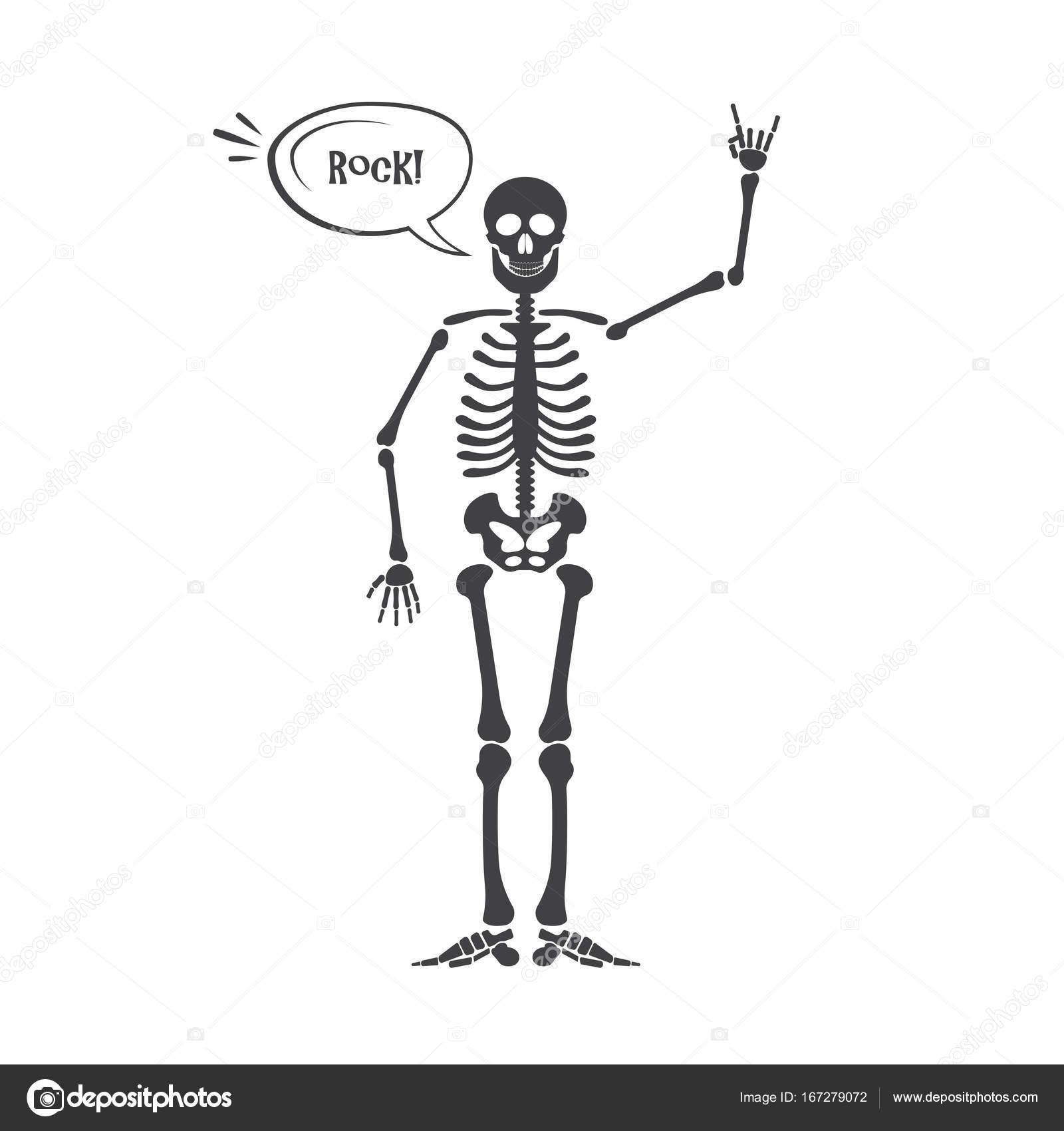 Skeleton human anatomy vector halloween black skeleton isolated skeleton human anatomy vector halloween black skeleton isolated on white skeleton hand sign biocorpaavc Gallery