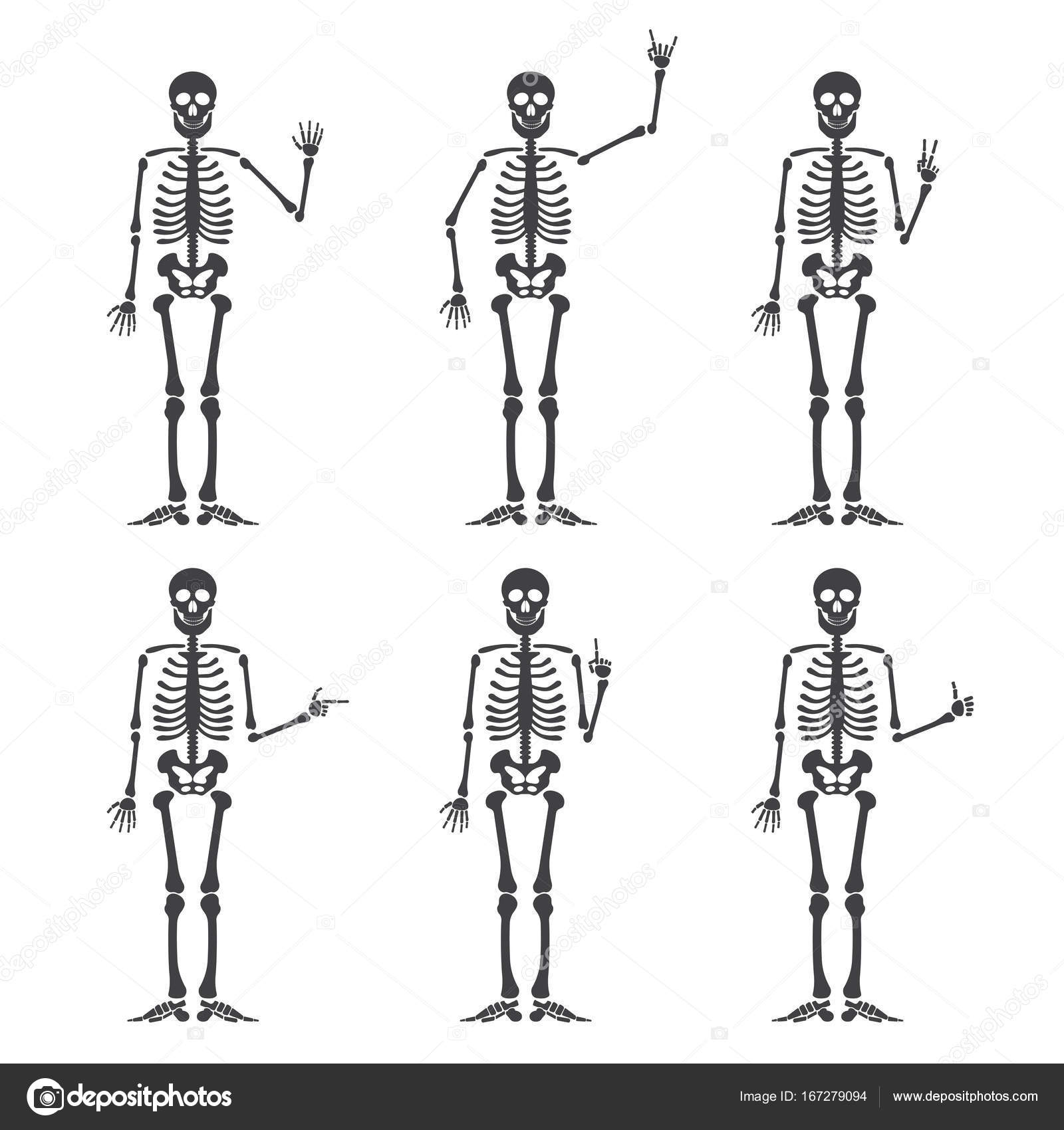 Skeleton hand gestures set: ok, finger up, finger down, fist, middle ...