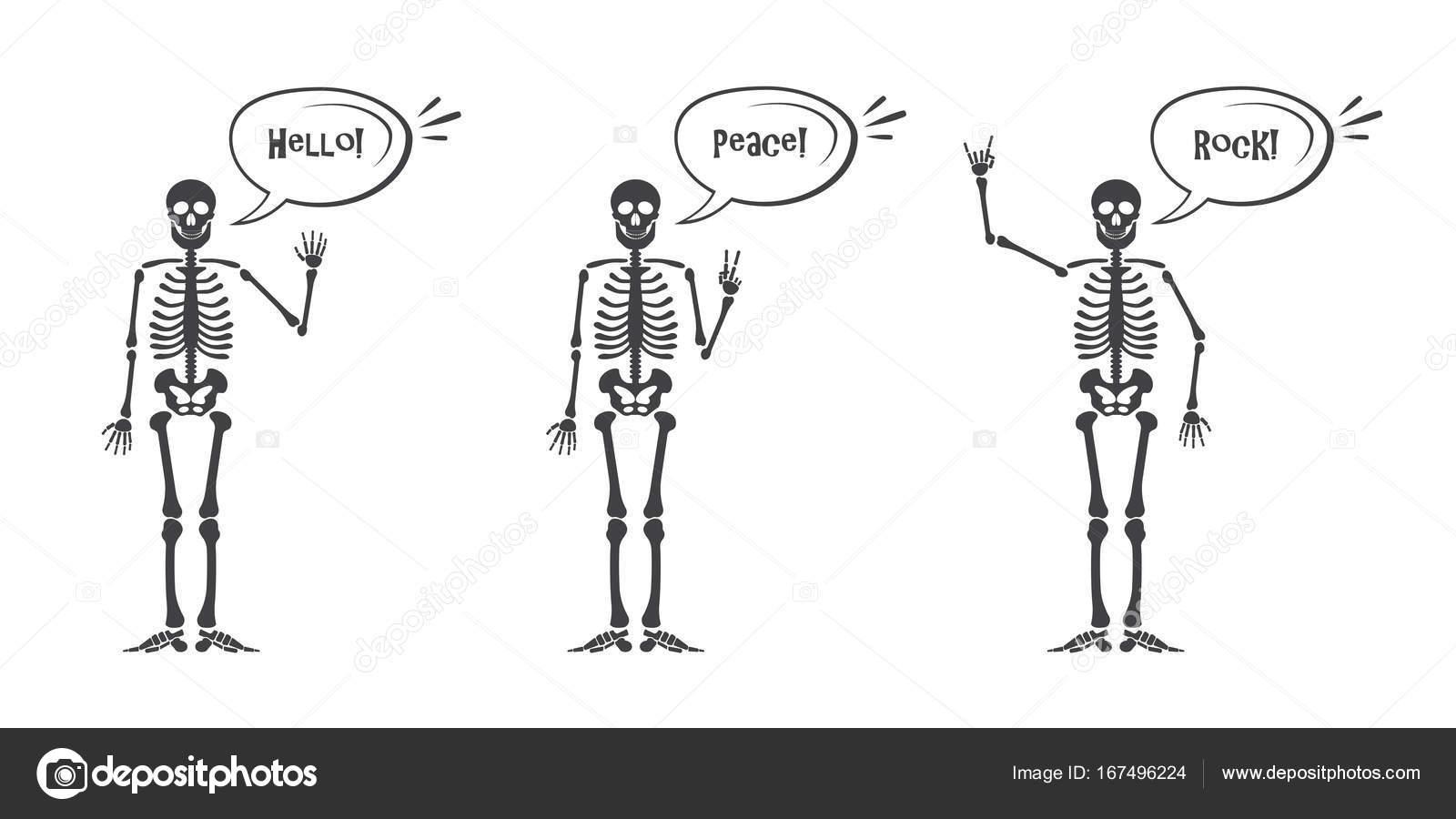 Mano esqueleto conjunto de gestos: ok, dedo para arriba, dedo abajo ...