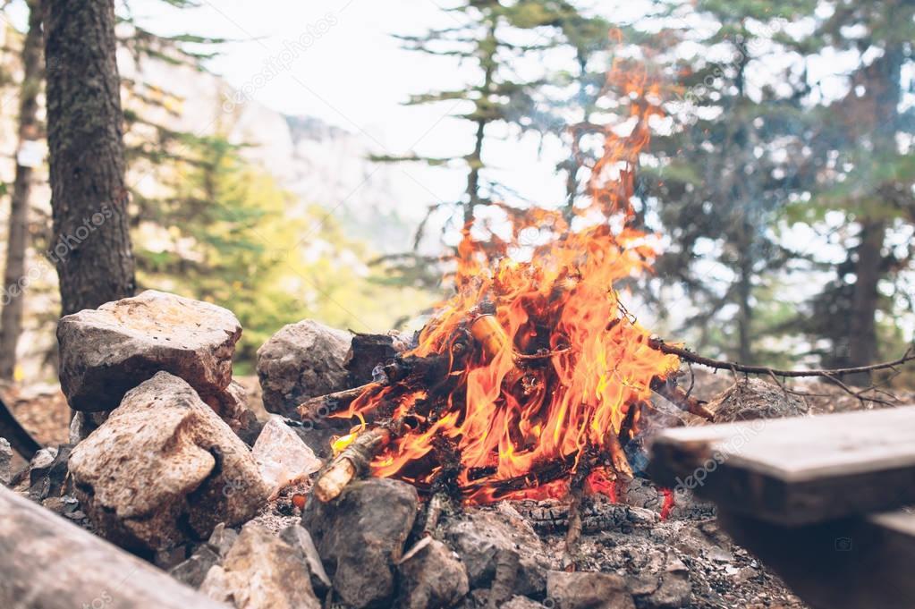 Tourists kindled fire
