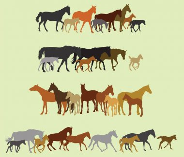 Set of isolated horses and foals silhouettes