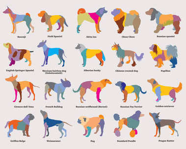 Vector set of colorful mosaic dogs silhouettes-3