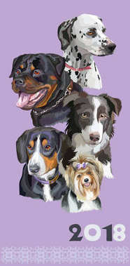 Postcard with dogs of different breeds-4