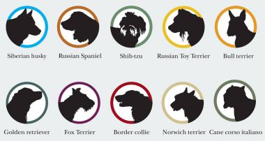 Vector set of portraits silhouettes of dog breeds