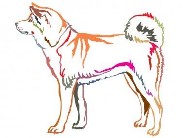 Colorful decorative standing portrait of Akita Inu