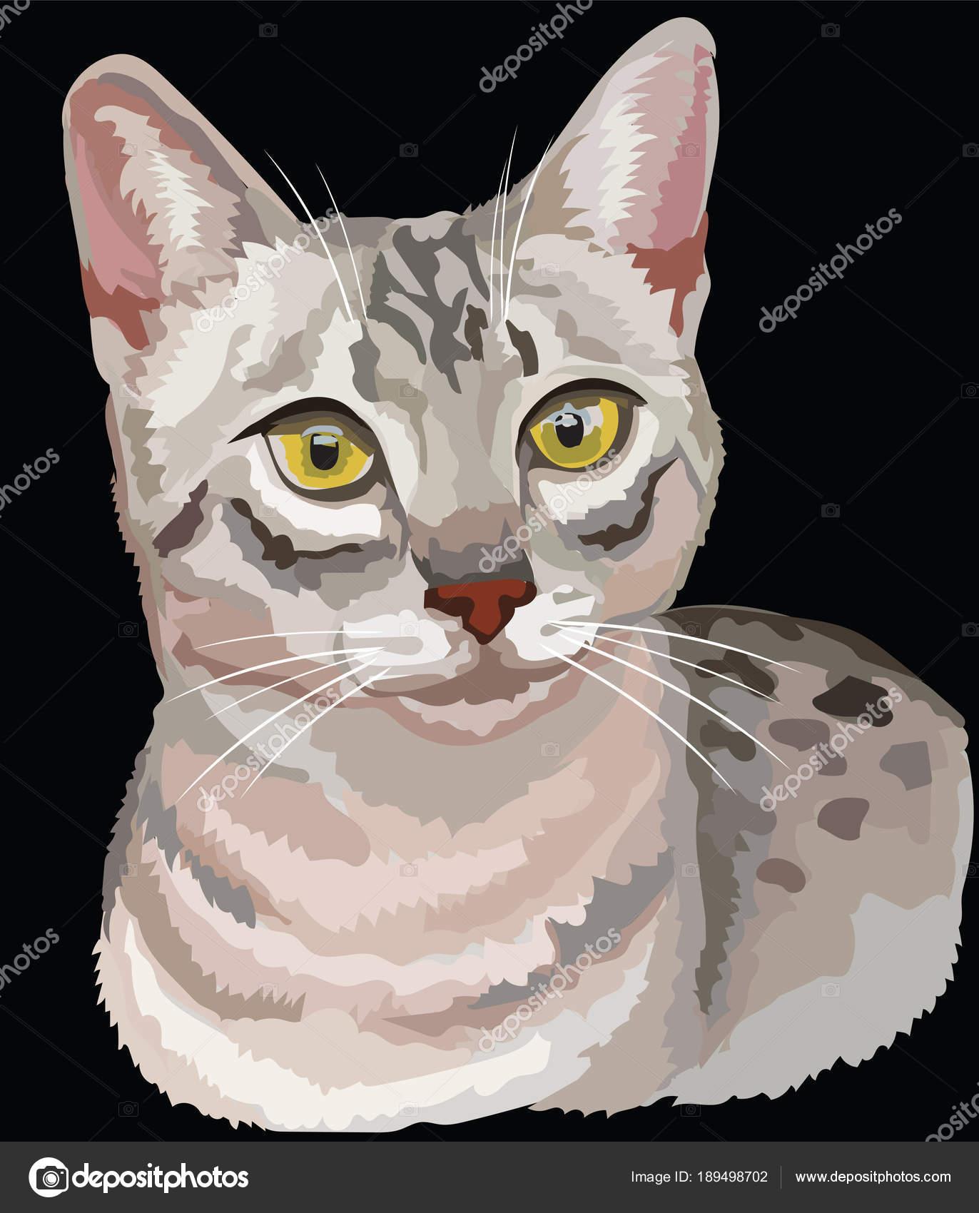 Kolorowy Kot Egipski Mau Grafika Wektorowa Alinart 189498702