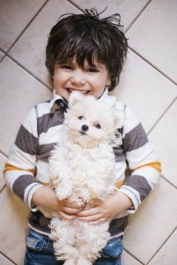 little boy lying with white dog