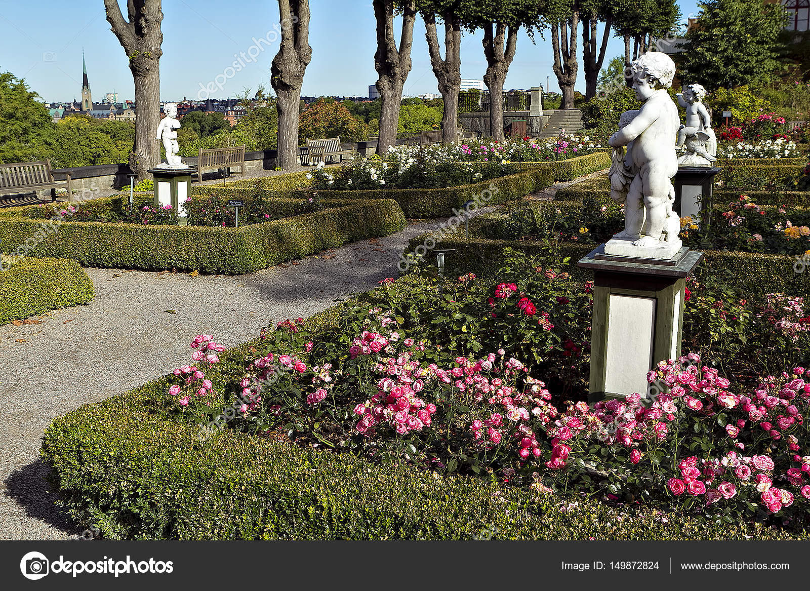 Blossoming rose flowerbeds in summer city park — Stock Photo ...