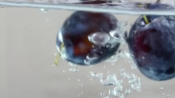 Violet Blue Plum Falling Into Water