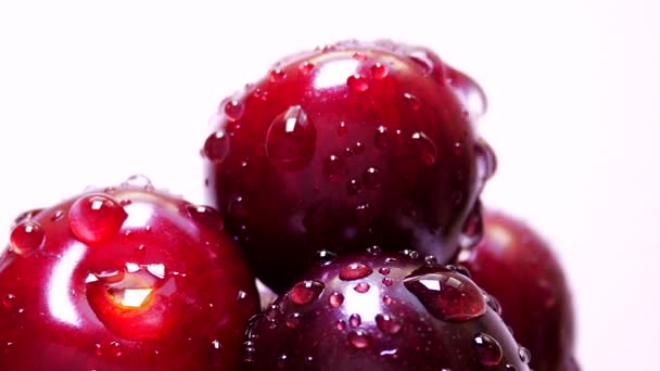 Drops of Water on Fresh Cherry Berries Rotate