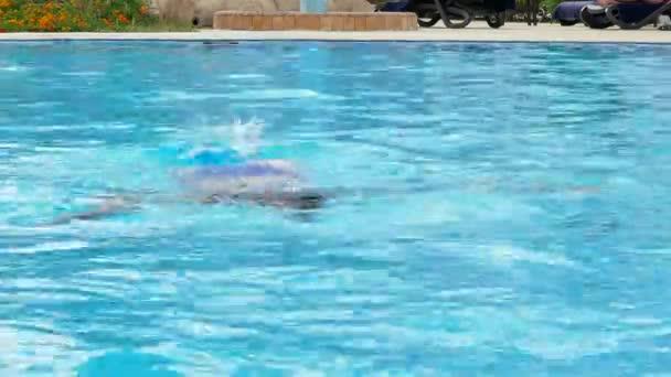 6f7dcb1c00 Bella donna in un costume da bagno blu nuota sotto l'acqua– filmato stock