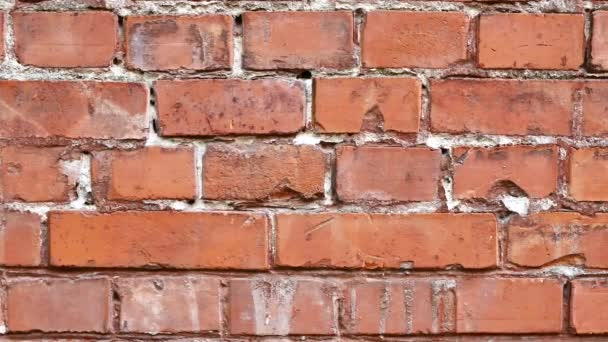 Old and torn surface of brick wall for background texture