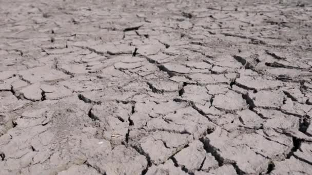 Water Crisis or Nature Disaster