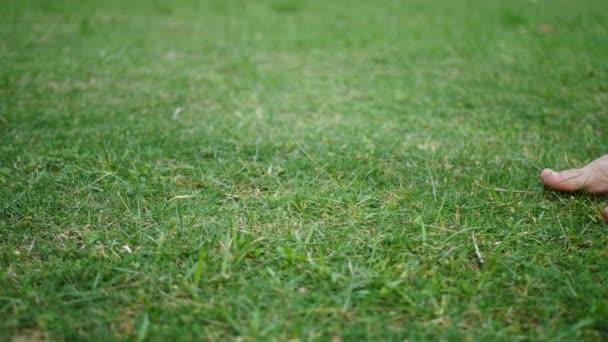 Dospělí muži klusají na čerstvě posekané zelené trávě s holýma nohama