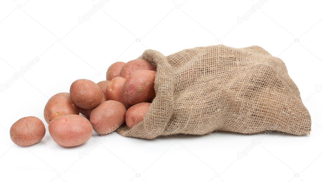 osmolarity of potato tuber tissue Independent variable: sucrose molarity dependent variable: % change in weight 4 predicting the osmolarity of the potato tuber tissue: you need to do a bit of research to determine the natural potato sucrose molarity.