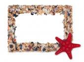 Üres képdoboz készült darab tengeri kagylókból és tengeri csillag
