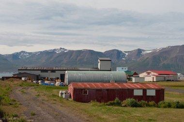 İzlanda'daki Hrisey Adası üzerinde eski sanayi binalar