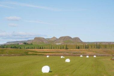 """Картина, постер, плакат, фотообои """"Байки, завернутые в пластик, на поле в Исландии"""", артикул 342458984"""