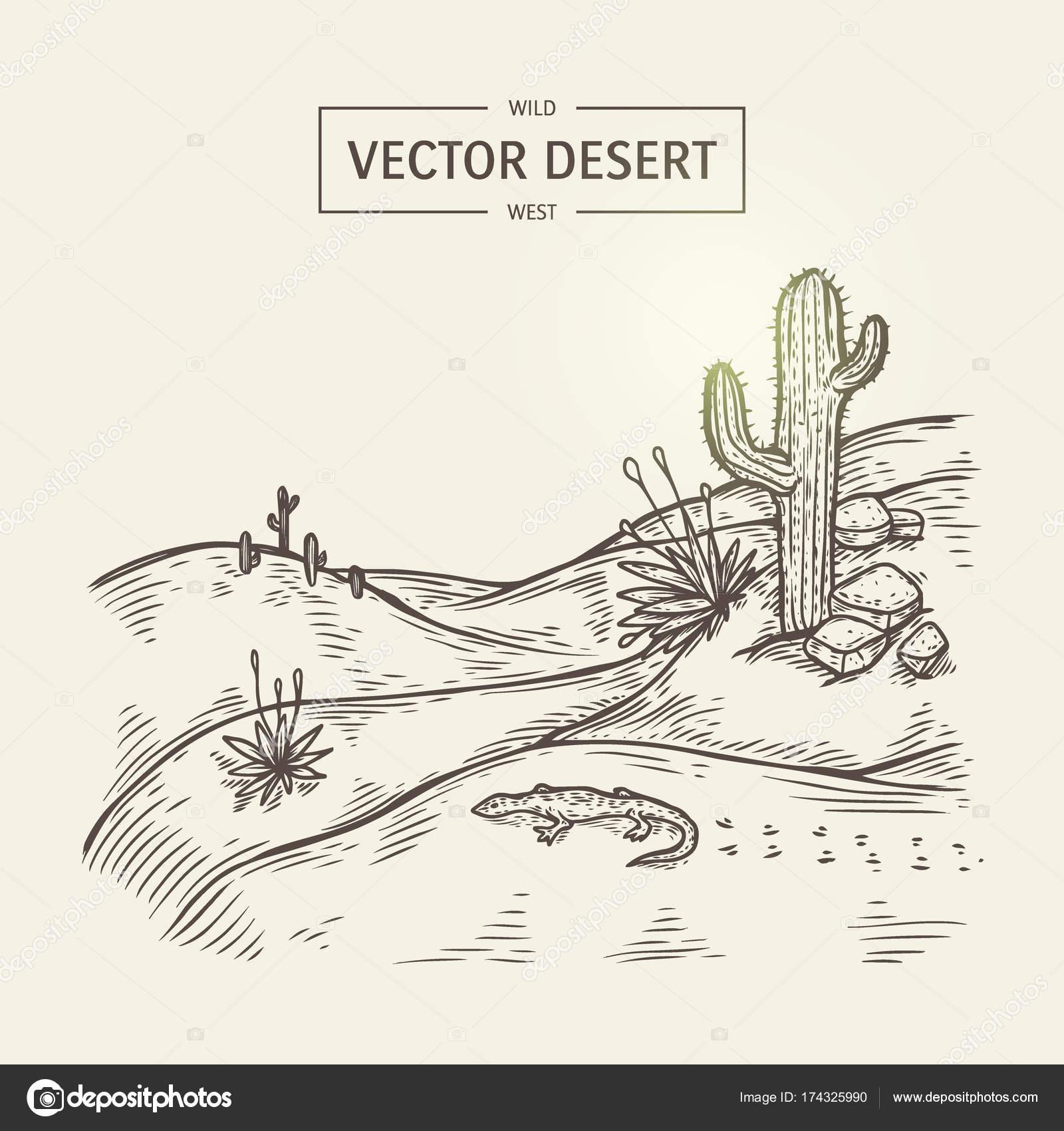 Bosquejo de un paisaje de desierto. Silueta de desierto de vector ...