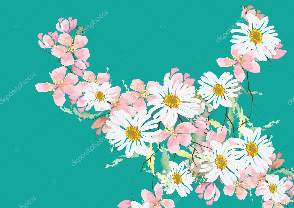 daisy flowers and cherry blossom flowers for object or background