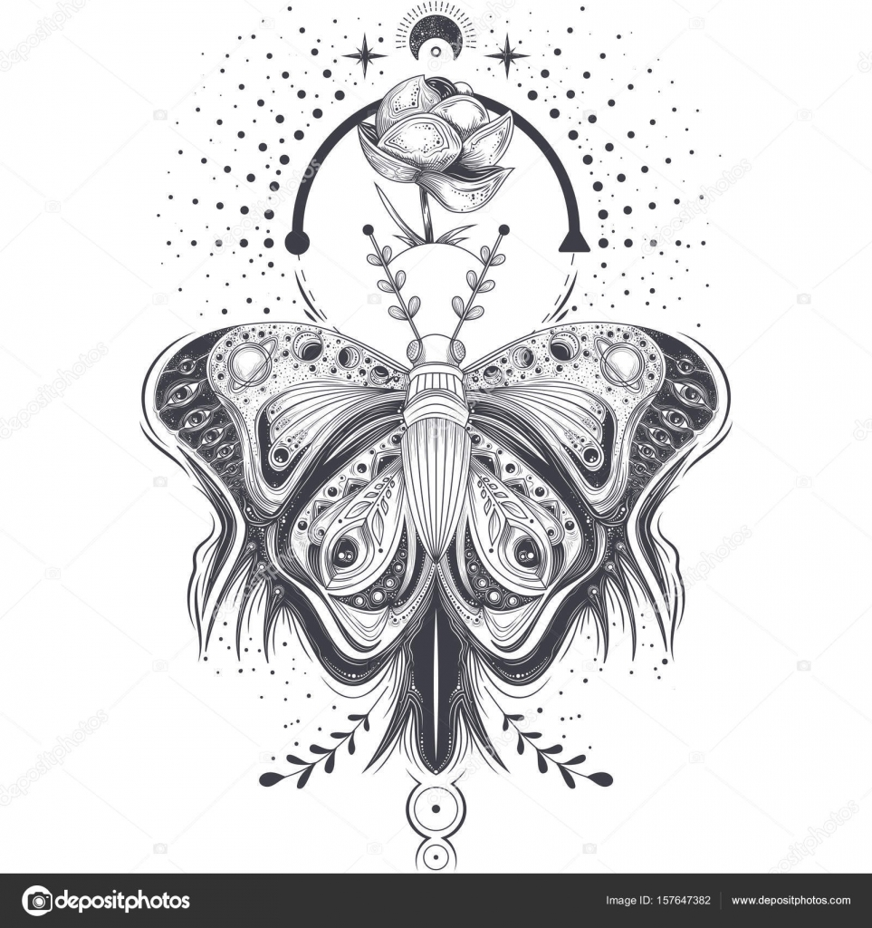 a17cd69804235 Vector illustration of a sketch, tattoo art butterfly in abstract style  with a space pattern, mystical, astrological symbol. Print, template,  design element ...
