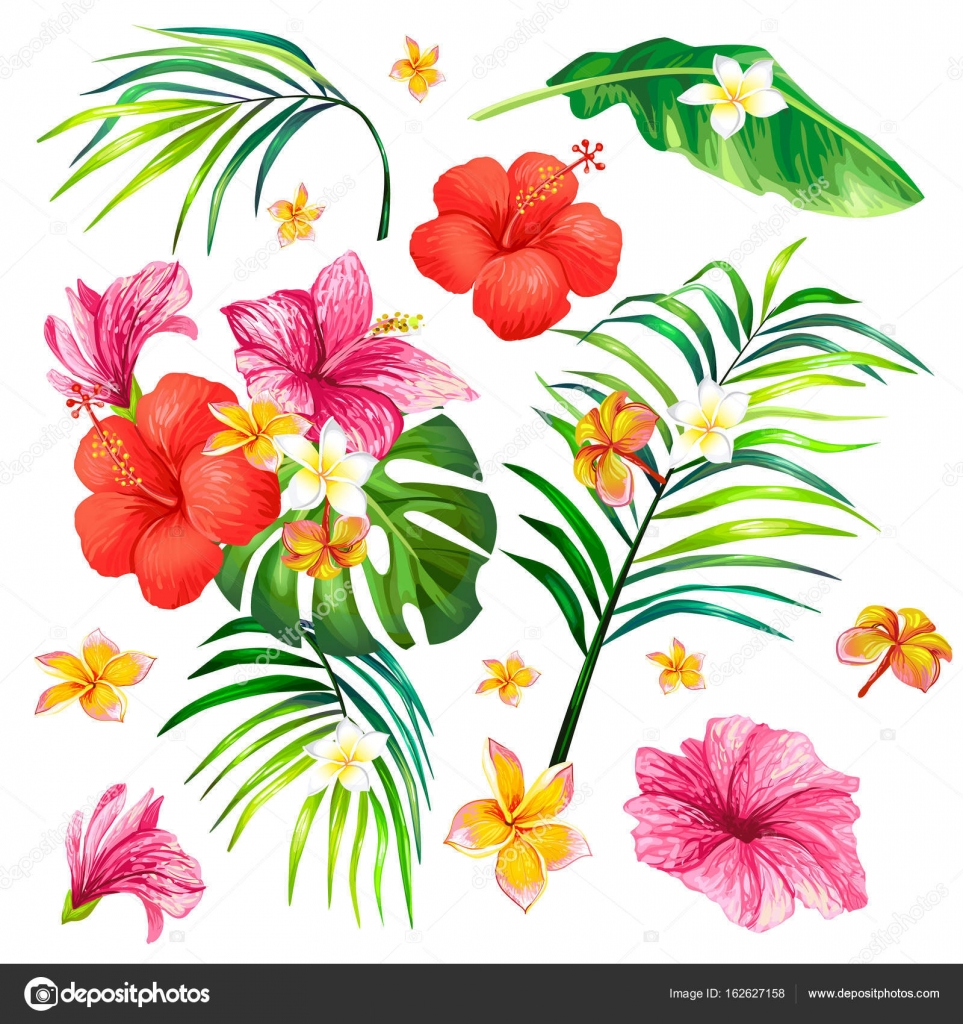 Seamless Pattern With Tropical Flowers And Leaves Stock Vector