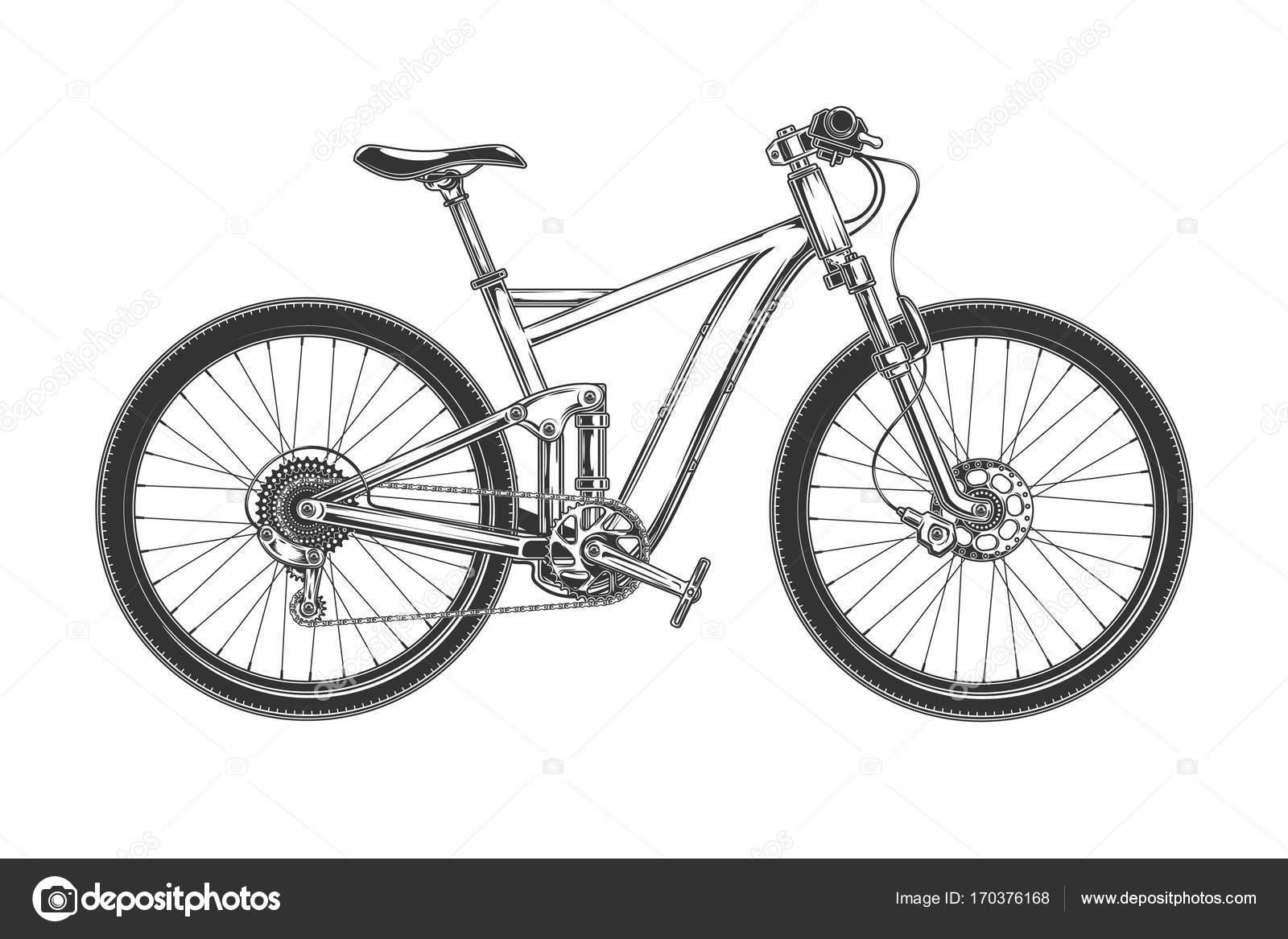 Descenso Cruz País Bicicleta Grabado Vector Vector De