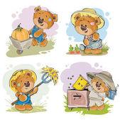 Set of illustrations of vector of teddy bear beekeeper, farmer.