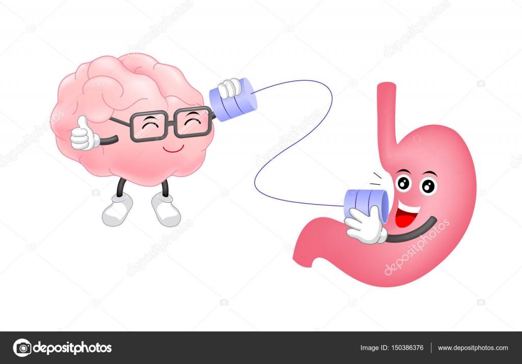 Estómago humano lindo hablar con cerebro pueden teléfono caracteres ...