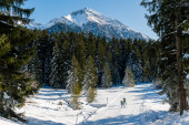 lidé si užívají zdravé nordické lyžařské cvičení ve švýcarských Alpách v lyžařském středisku Lenzerheide