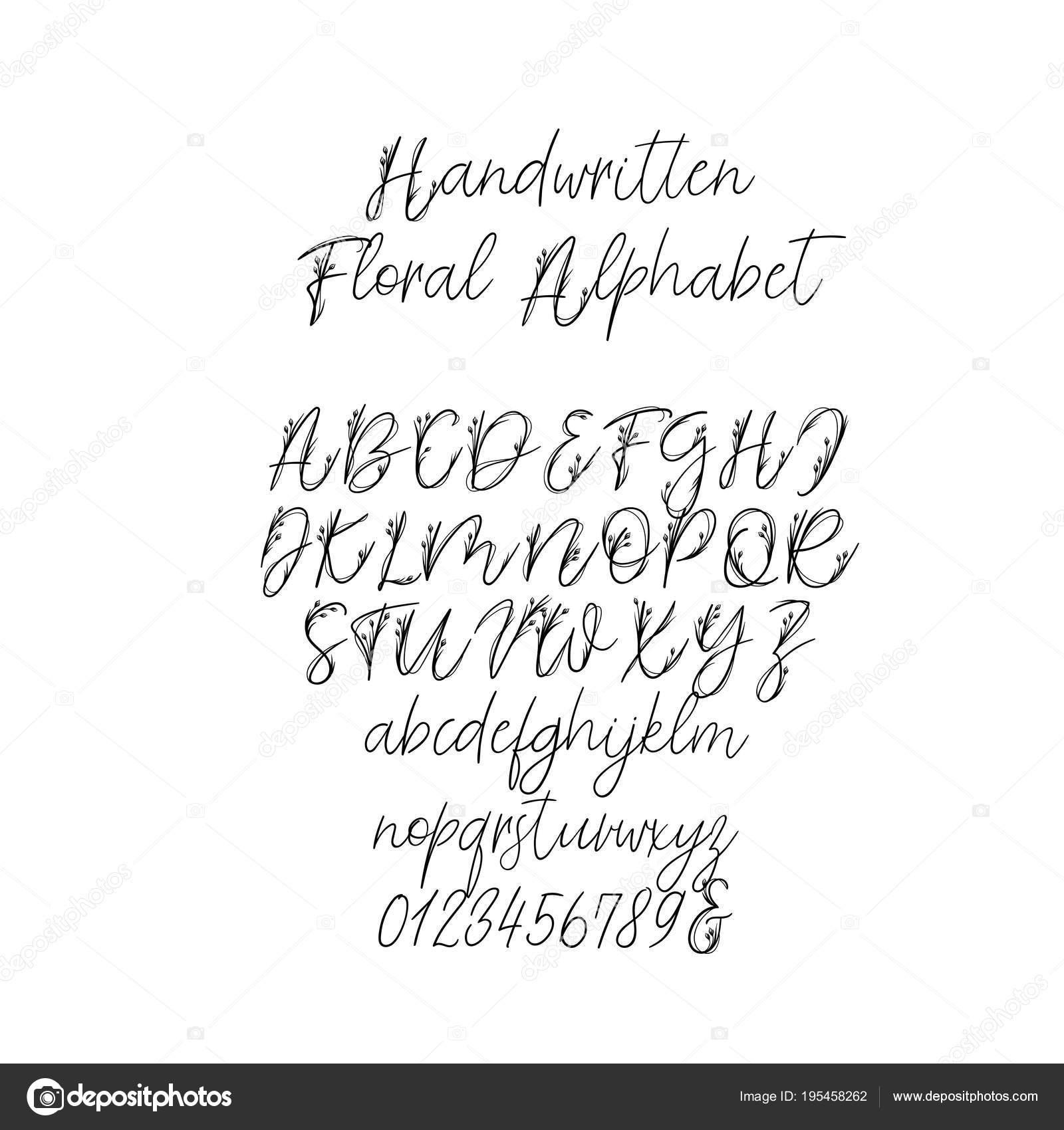 Dekorative Handschriftliche Pinsel Schriftart Für: Hochzeits Monogramm,  Logo, Einladung. Hochzeit Blumen Schriftart Isoliert Auf Weißem Hintergrund  U2014 Vektor ...