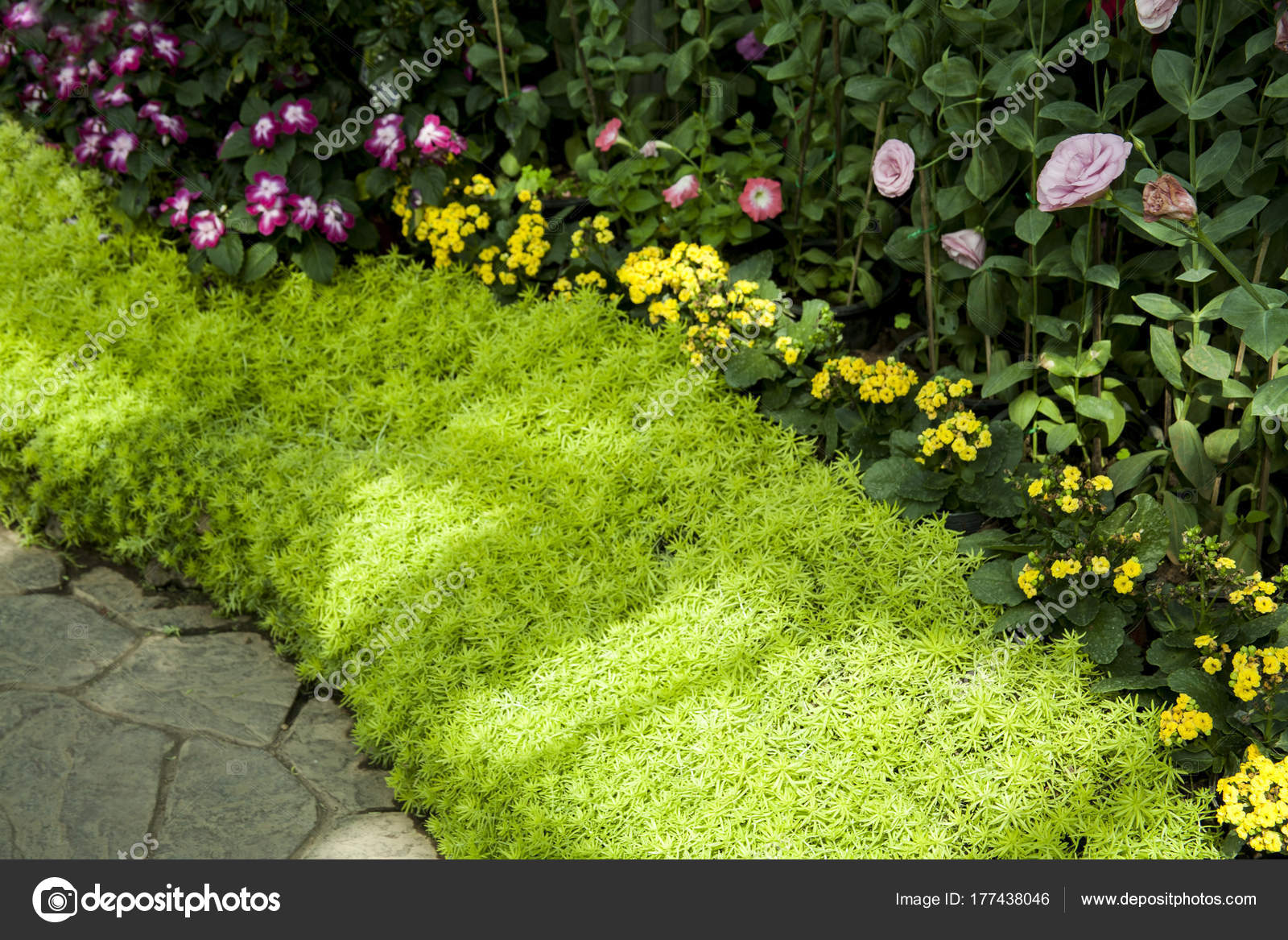 Beautiful Tropical Garden Landscaping Tropical Plants Stock Photo Image By C Nillapat Yahoo Com 177438046