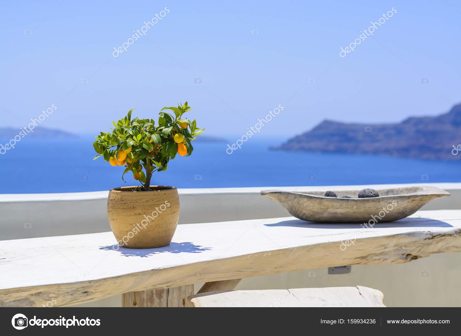 Boom In Pot Op Balkon.Tangerine Boom In De Oude Klei Pot Op Achtergrond Blauwe Zee