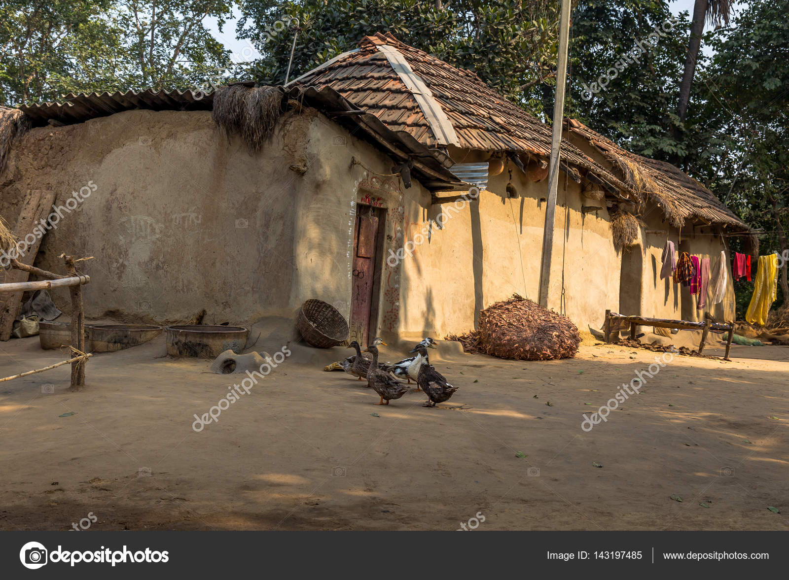 A Calm Indian Rural Village In Bankura West Bengal With Thatched Mud Huts Piled Haystack And Ducks On The Courtyard Photo By Deyroop