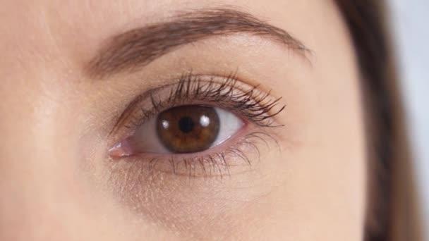 Detailní záběr oka mladých ženách hnědé. Dívka otevírání a blikající její oko