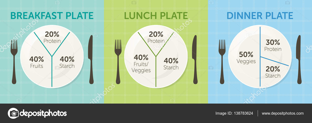 healthy eating plate diagram — stock vector