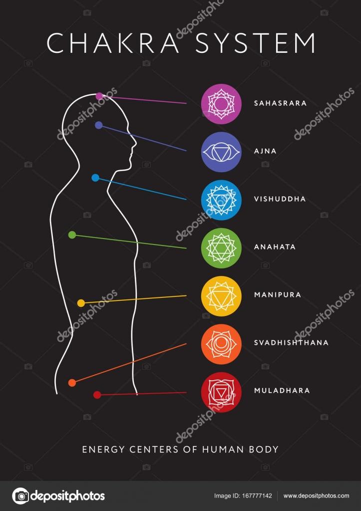 Sistema de chakras del cuerpo humano. Centros de energía — Archivo ...