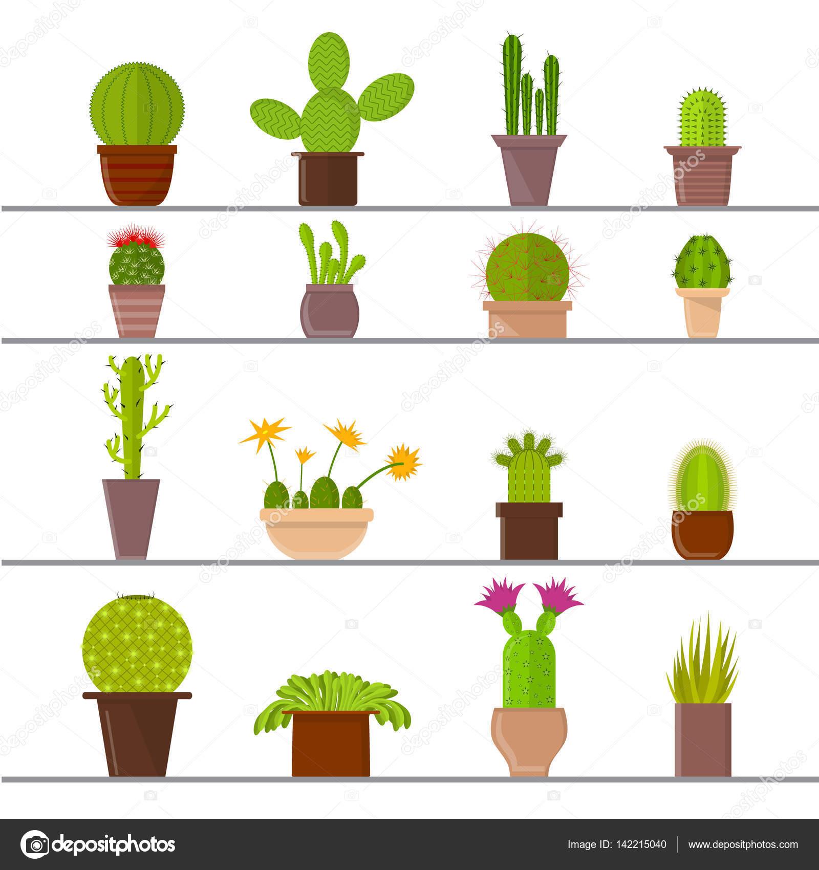 Dibujos animados plantas cactus en macetas vector de for Imagenes de plantas en macetas
