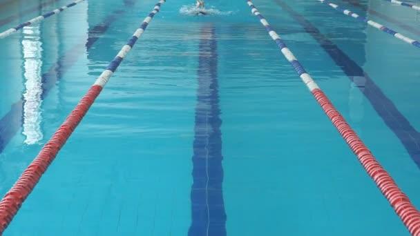 mladá žena v brýle a čepici plavání styl motýlek v modré vody vnitřní závod fondu