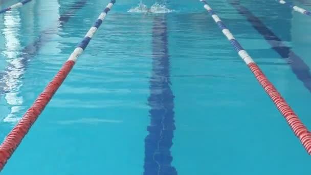 2b339adca Mujer joven en gafas y gorro natación braza el estilo de trazo en la piscina  de interior carrera agua azul– metraje de stock