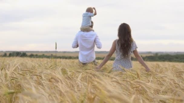 Šťastné dětství, rodinné, chůze na pšeničné pole