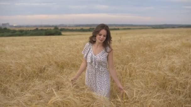 Woman in dress on summer wheat field, sunset