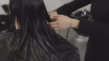 Hairdresser-fashion designer shearing hair to a young woman in a beauty salon