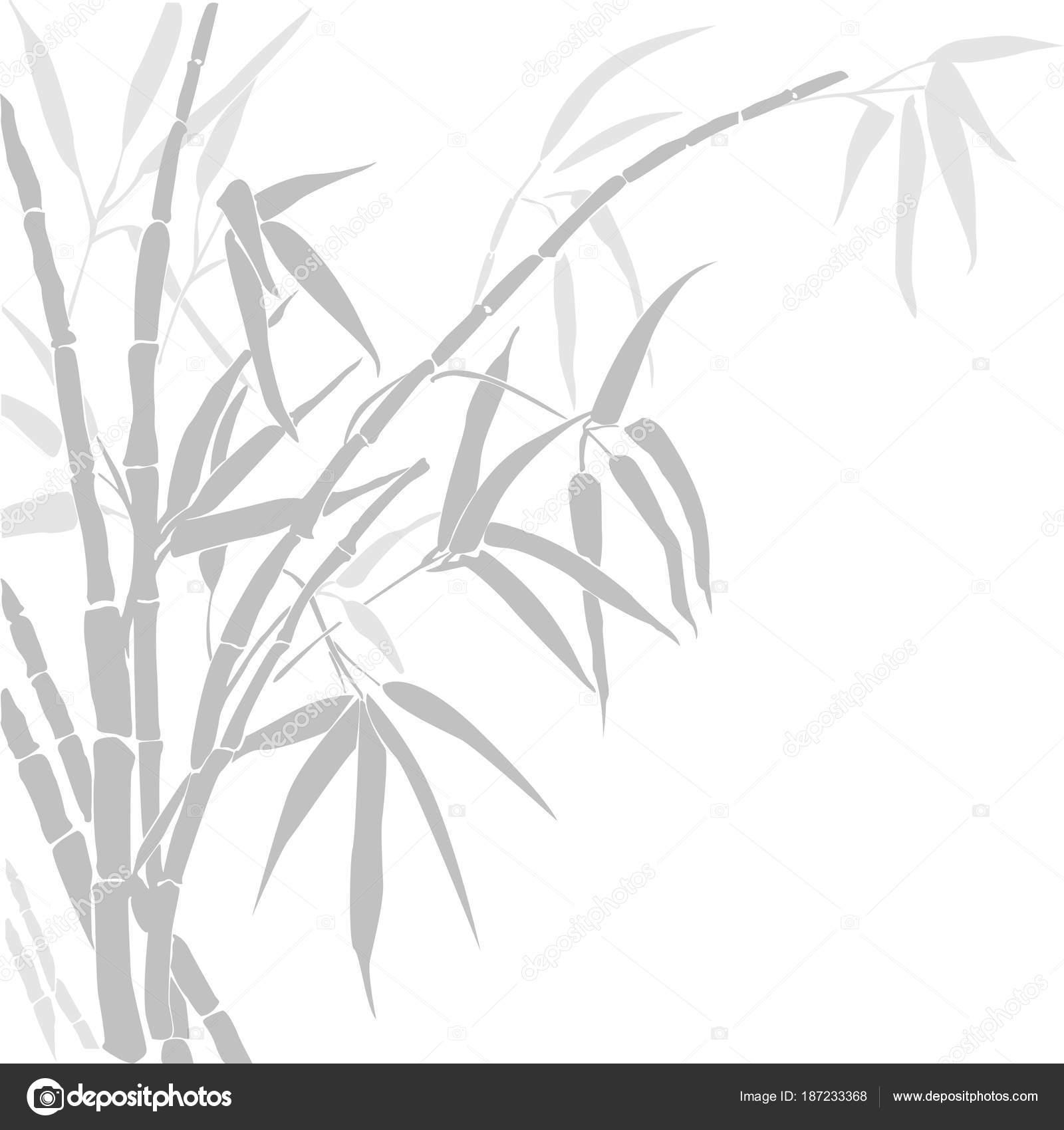 bamboo vector silhouette bamboo silhouette bamboo gray colors isolated white stock vector c avto mkcentr yandex ru 187233368 https depositphotos com 187233368 stock illustration bamboo vector silhouette bamboo silhouette html
